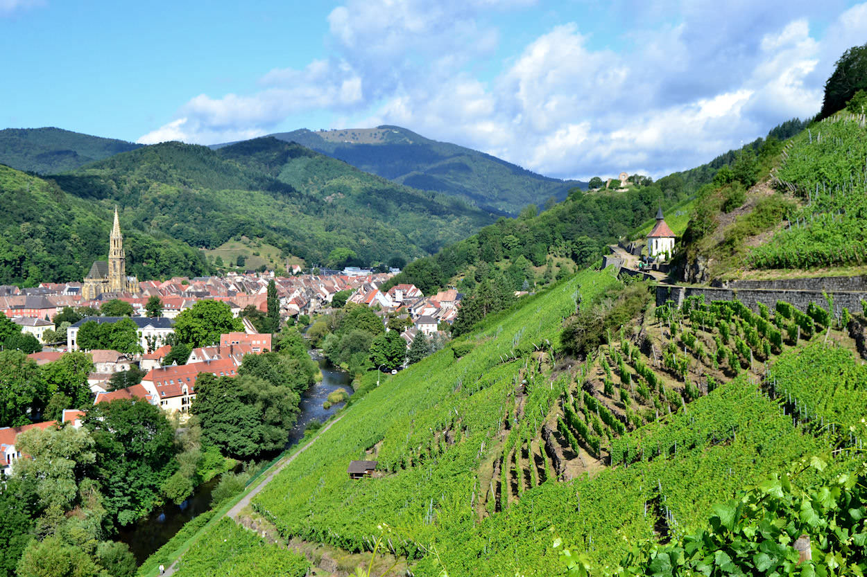 Rhin-ville-de-Thann-Haut-Rhin-Alsace-France-Europe.