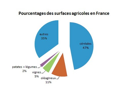 France-surfaces-agricoles-en-France-Europe.
