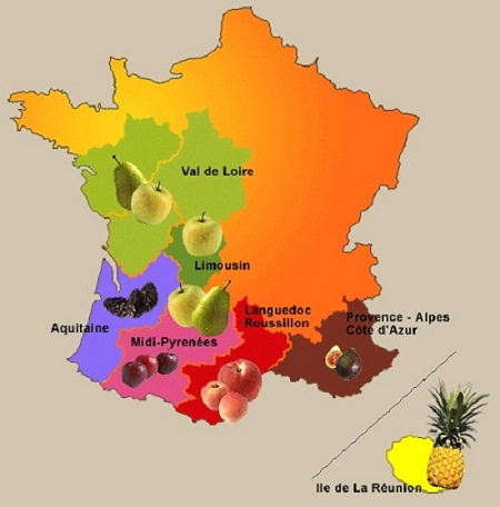 Fruits-en-France-carte-des-fruits-en-France-Europe