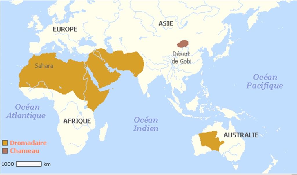 ou-se-trouve-le-desert-darabie-sur-la-carte-du-monde